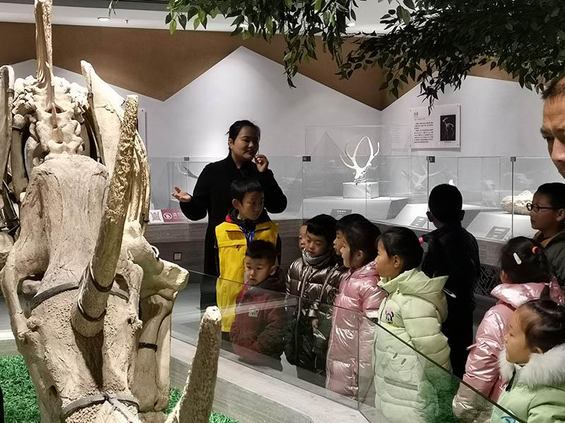 """白银市博物馆举办""""黄叶纷纷舞劲风""""亲子活动白银文明网"""